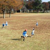 1・2年生が県西総合公園に行ってきました。